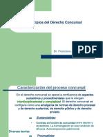 01-Principios Del Derecho Concursal