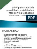 20 principales causa de mobi-mortalidad en México y