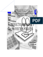 Proyecto Del Sector Publico y Privado