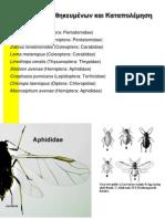 Lab Crop Entomology II