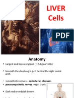 Liver Cells -Pradep