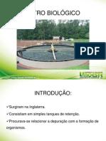 Filtro biológico e Frigorifico final