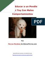 Como Educar a Un Poodle Mini Toy Con Malos Comportamientos