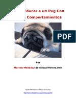 Como Educar a Un Pug Con Malos Comportamientos
