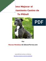 Como Mejorar el Comportamiento Canino de tu Pitbull