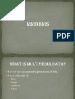 MultiMedia DBMS