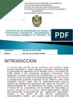Investigacion Truchas