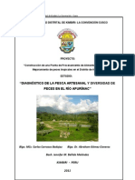 Diagnostico de la Pesca Artesanal y diversidad de peces en el río Apurimac