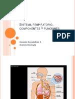 Clase 4 Sistema Respiratorio