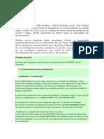 Diego Andrés_Clase2 piaget