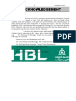 Recommended Internship Report HBL