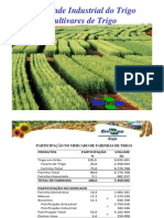 Qualidade Industrial Do Trigo - Cultivares de Trigo