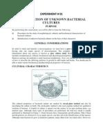AM 1207 Lab Manual