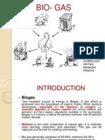 Presentation 1 Biogas
