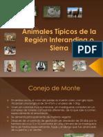 Animales de La Sierra Del Ecuador