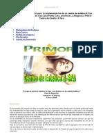 Proyecto Implementacion Centro Estetica Spa Rep Dominicana