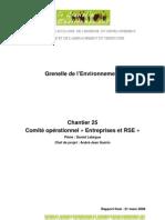 REG grenelle de l'environnement _entreprises & responsabilité sociétale _rapport2008