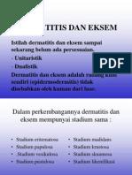 Dermatitis Dan Eksem [Dr. Gunawan]