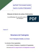 GUI entreprises, système d'information & structure interne _master2006