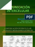 dComunicIntercelular-Sinapsis