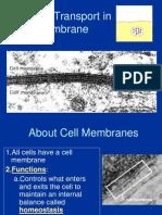 Transport Membran Sel