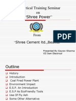 PPT on Shree Cement