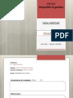2012 06 17 D9CW2 HOEFFLER Celine Devoir Final