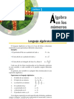 Algebra en Los Numeros Reales