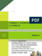 Formas y Expresiones de La Familia