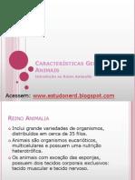 caracteristicasgeraisdosanimais-estudonerd-120225225451-phpapp01 (1)