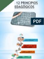 12 Principios pedagógicos2011