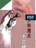 Shaolin Yingzhao 13zhua.Yang Wei
