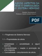 Alguns aspectos da filogênese e embriologia do Sistema