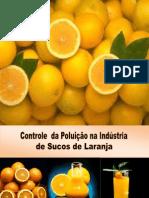 Controle da Poluição na Indústria de sucos de Laranja
