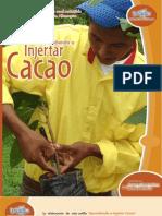 19 Aprendiendo a Injertar Cacao