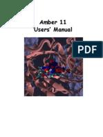 Amber 11