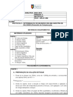 PROTOCOLO DE AULA PRÁTICA - DETERMINAÇÃO DE MAGNÉSIO EM UMA AMOSTRA DE CALCÁRIO