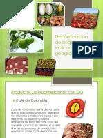 Denominación de origen e Indicación geográfica.