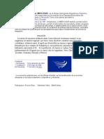 Mercosur 2