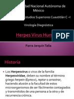 Herpes Virus Humano