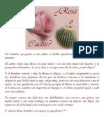 Rosa Cactus
