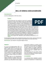 Cannabinnoides y El Sistema Endo-cannabinoide