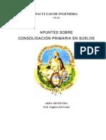 Apuntes Sobre Consolidacion Primaria (2009)
