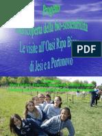 Presentazione Gruppo 1- 2°A
