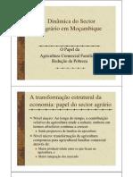 Dinamica Do Sector Agrario FINAL