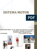 Sistema Motor Unidad II
