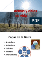 Ecosistemas y Ciclos de Vida