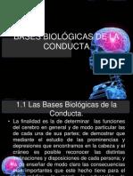 Bases Biologicas de La Conducta