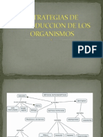 estrategiasdereproducciondelosorganismos-120229122047-phpapp02
