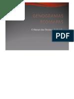 Genograma e Ecomapa PDF